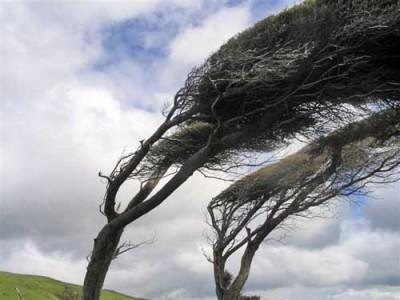 682677_vento-forte
